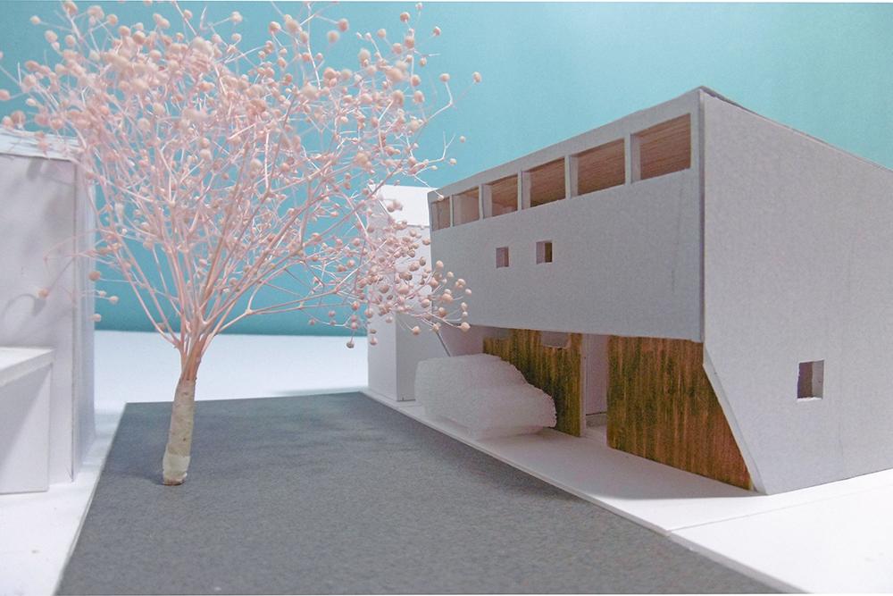 桜並木と01_478